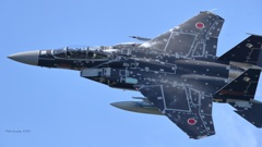 F-15DJ_AGR_9876