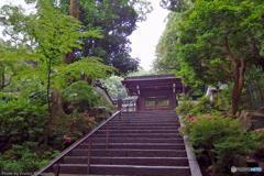 梅雨の南禅寺(再) その2