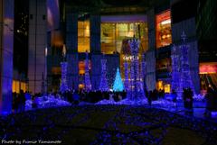Caretta Illumination 2018 その1