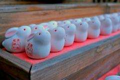 八坂神社のうさぎさん