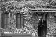 Antique Pizza House その9