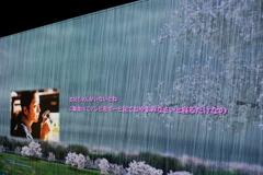 葛飾柴又寅さん記念館 2020年 睦月 その6