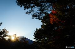 夕景の富士山と紅葉