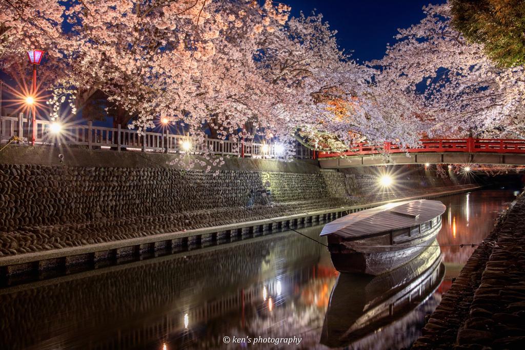 結びの夜桜