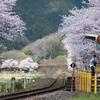 春色の汽車を待つ