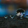 ガラス玉の中の『S』