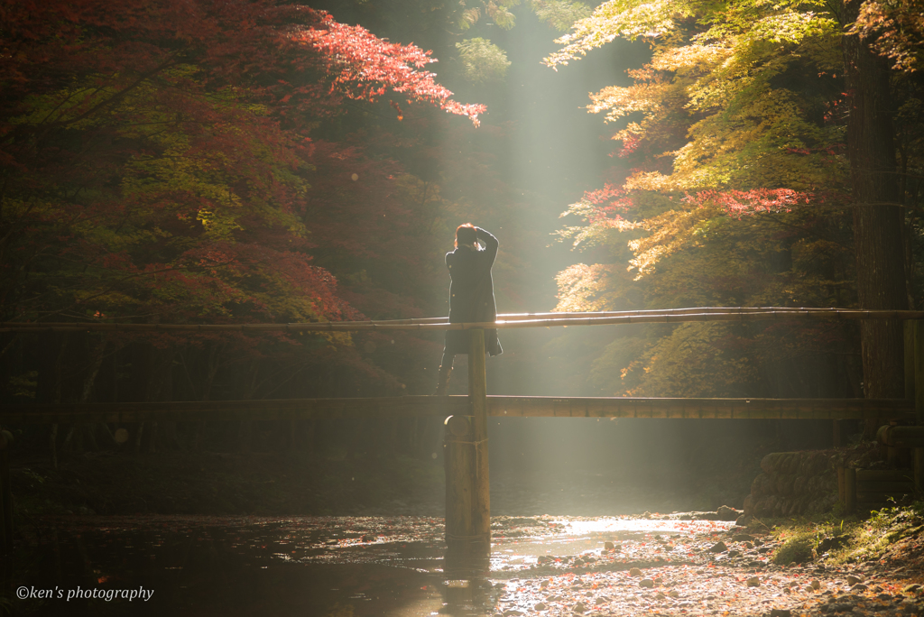 光を撮る人