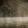 いつもの池の朝 ~晩秋~