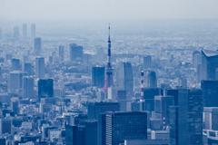 東京タワーを見下ろす