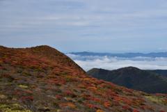 紅葉と雲海を望んで
