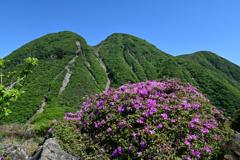 三俣山ミヤマキリシマ