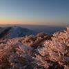 朝焼けの霧氷