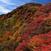 三俣山お鉢巡りの紅葉