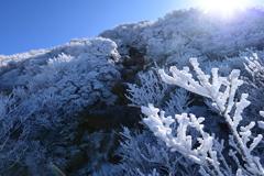 冬の大船山Ⅱ