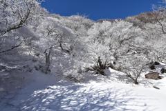 冬の大船山