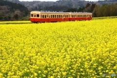 春色のローカル線 02