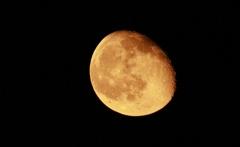 妖しげなお月様