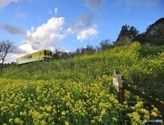 ローカル線の春