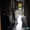真夏の京都散歩---④
