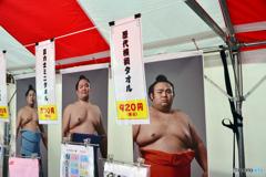 大相撲初場所---④