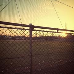 Base Ball Blues