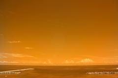 infrared landscape 91
