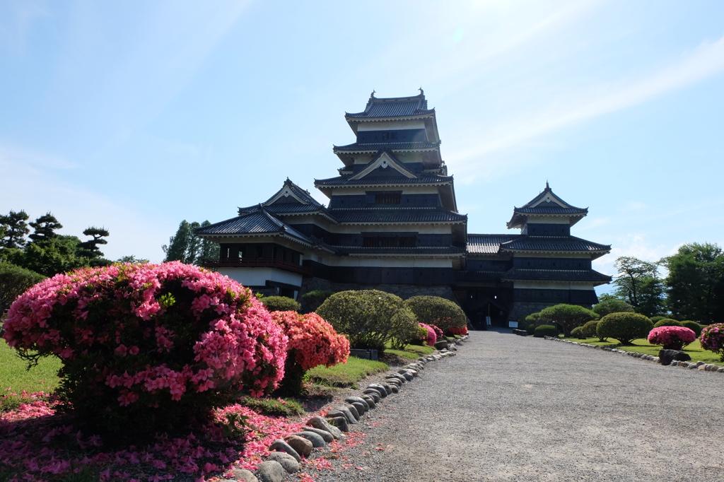 つつじと松本城