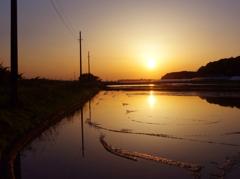 水田と落陽