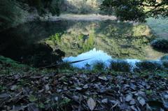 静寂2~枦山池