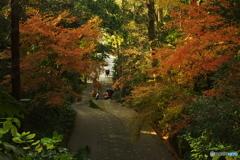 鎌倉Now03(妙本寺)