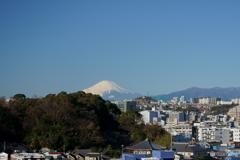 雪富士はるかⅠ(稲荷坂)
