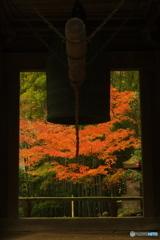 鎌倉Now12(報国寺2)