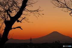 富士憧憬30(北公園)