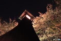 桜の中 住吉燈台