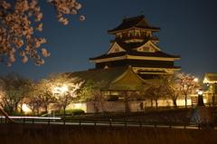 夜桜・清洲城
