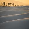砂丘雪景 ~染まりゆく丘~
