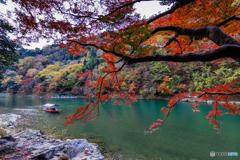 桂川の流れ
