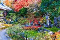 霊鑑寺の庭園