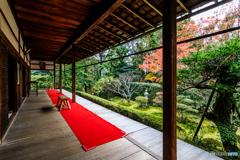 桂春院の庭園