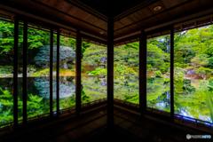 新緑の旧竹林院