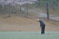 ゴルフ日和・・・2