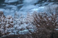 infrared 試写