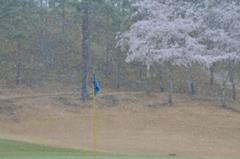 ゴルフ日和・・・1