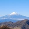 丹沢からの富士