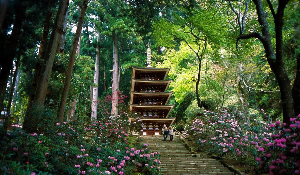 花の室生寺