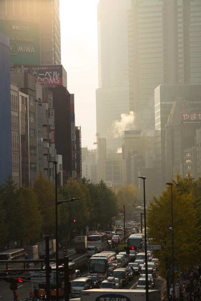 新宿・甲州街道