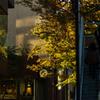街の秋模様
