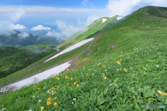 花咲く稜線