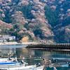漁師町の春