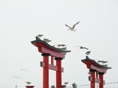 ある鳥居2